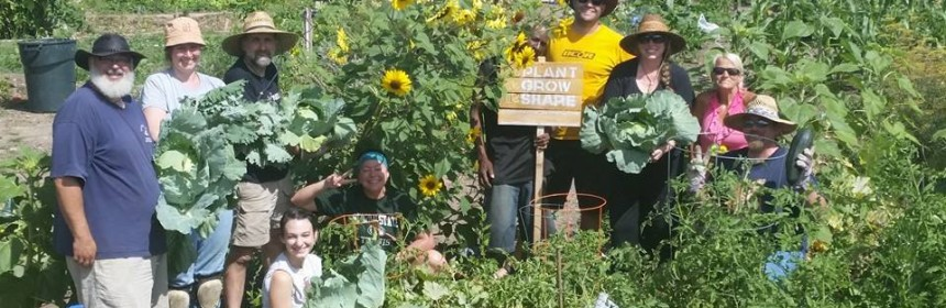 Photo of the gardeners posing amongst the vegetation at the Ruby Hill Community Garden