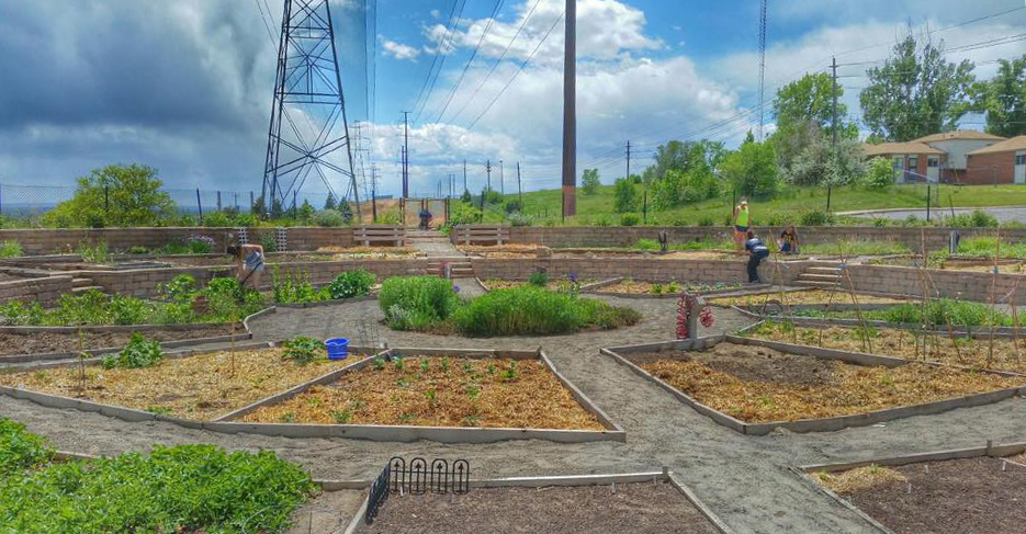 A photo of the Ruby Hill Community Garden