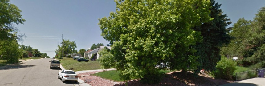 Streetview photo of trees in the Ruby Hill neighborhood. Low-cost trees are offered by Denver Digs Trees is available to Ruby Hill neighbors.